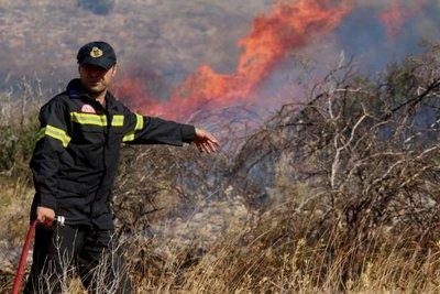 Σε εξέλιξη πυρκαγιά στην Σκόπελο - Επιχειρούν 4 πυροσβεστικά αεροπλάνα και ένα ελικόπτερο