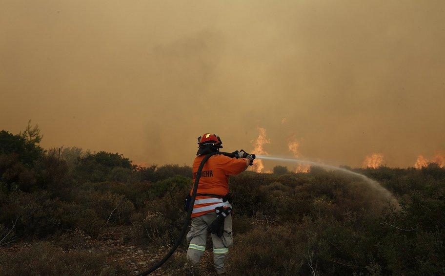 Φωτιά στην περιοχή της Αμαλιάδας