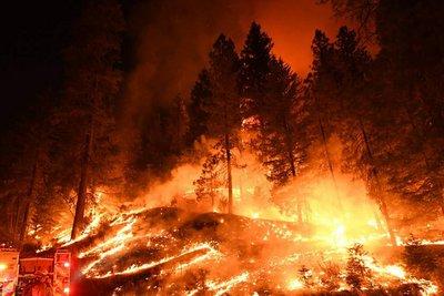 Αμερικανός υπουργός Εσωτερικών: Ευθύνες σε περιβαλλοντολόγους για τις πυρκαγιές της Καλιφόρνιας – Στους 79 οι νεκροί