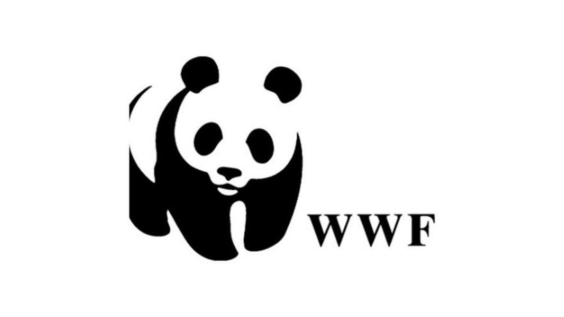 Ανησυχία της WWF για τις ελληνικές θάλασσες, με αφορμή την έρευνα και εξόρυξη υδρογονανθράκων