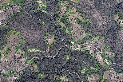 Παράταση υποβολής αντιρρήσεων για τους αναρτημένους δασικούς χάρτες - Ποιες περιοχές αφορά