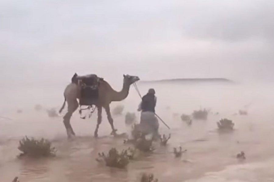 Η έρημος μετατράπηκε σε... θάλασσα - Απίστευτο βίντεο από τη Σαουδική Αραβία