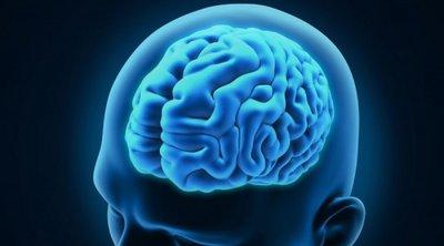 Έρευνα Ελλήνων επιστημόνων ανατρέπει την υπάρχουσα θεωρία λειτουργίας των εγκεφαλικών κυττάρων