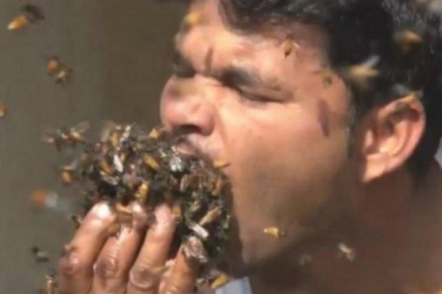 Απίστευτο: Ινδός βάζει εκατοντάδες μέλισσες στο στόμα του