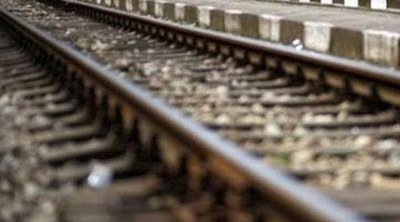 Βουβάλια έπεσαν σε τρένο