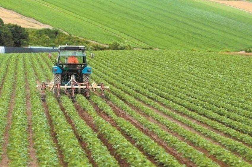 Νερό εμπλουτισμένο με νανοφυσαλίδες ποτίζει κατά 40% μεγαλύτερη επιφάνεια καλλιέργειας