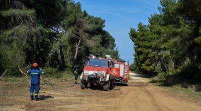 Στα «κόκκινα» για υψηλό κίνδυνο πυρκαγιάς Αττική, Εύβοια- Δείτε το χάρτη της ΓΓΠΠ