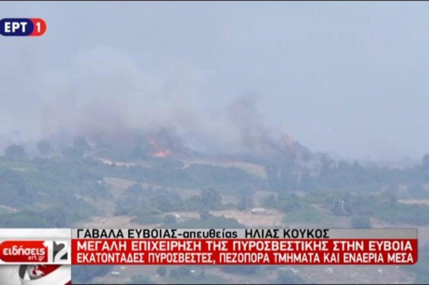 Η φωτιά πλησιάζει το χωριό Γαβαλάς στην Εύβοια - ΒΙΝΤΕΟ