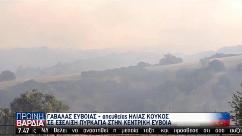 Μάχη με τις φλόγες σε τρία μέτωπα στην Εύβοια