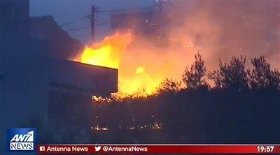 Οδοιπορικό του ΑΝΤ1 στην Κινέτα έναν χρόνο μετά την μεγάλη φωτιά