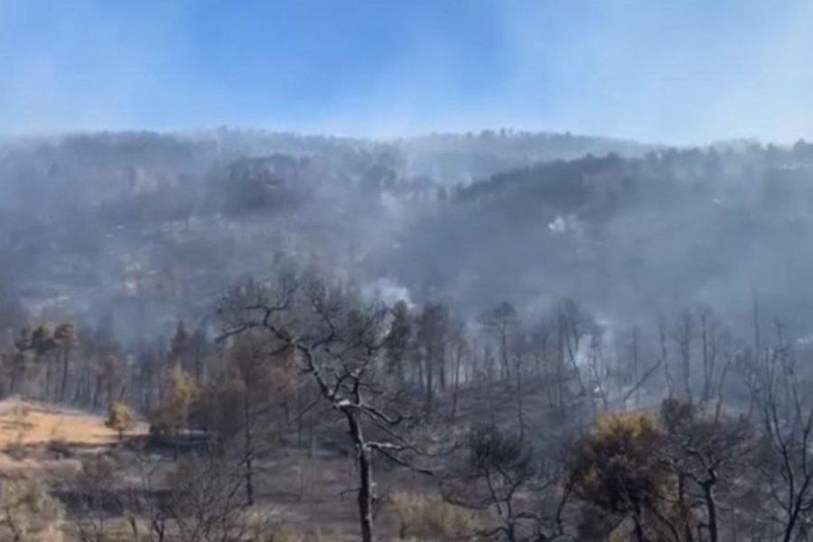 Σοκάρουν οι εικόνες καταστροφής από τη μεγάλη πυρκαγιά στην Εύβοια