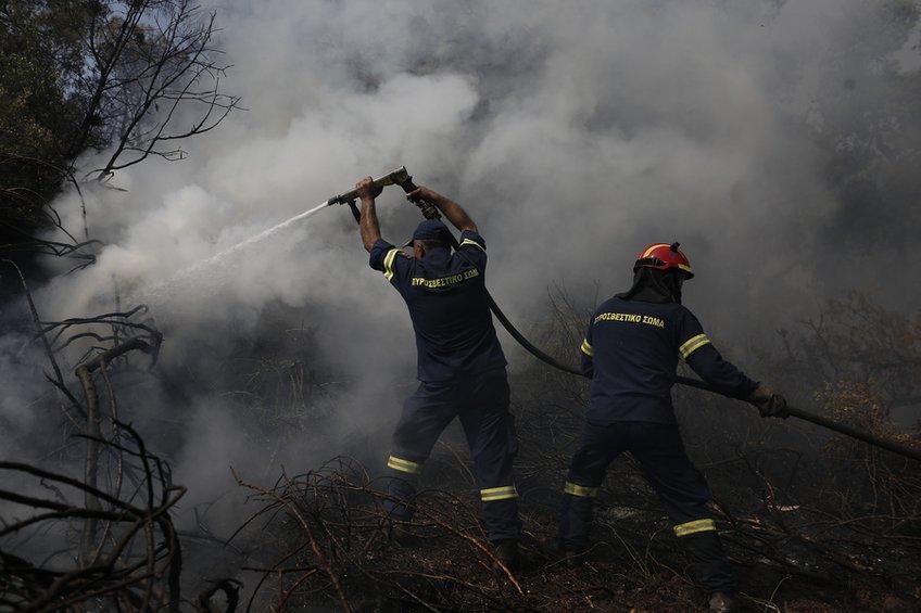 Κρανίου τόπος στην Εύβοια: Αποκαΐδια 28.000 στρέμματα δάσους - Μάχη με τις αναζωπυρώσεις δίνουν οι πυροσβέστες