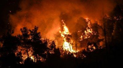Αυτό είναι το προφίλ του εμπρηστή στην Ελλάδα - Τι δείχνουν τα στοιχεία από δασικές πυρκαγιές
