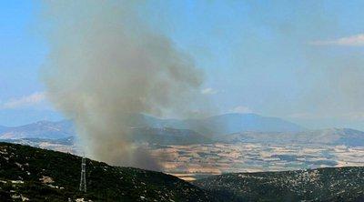 Πυρκαγιά στις Ερυθρές Μάνδρας: Υπό έλεγχο την έθεσε η Πυροσβεστική παραμένουν επιτόπου οι δυνάμεις