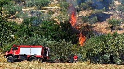 Πυρκαγιές σε Νέα Μανωλάδα, Μεγαλόπολη και Ασπρόπυργο