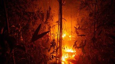Πυρκαγιές στον Αμαζόνιο: Έκκληση της Κολομβίας στη διεθνή κοινότητα -  Στη Βολιβία 9.500.000 στρέμματα δάσους έχουν γίνει στάχτη