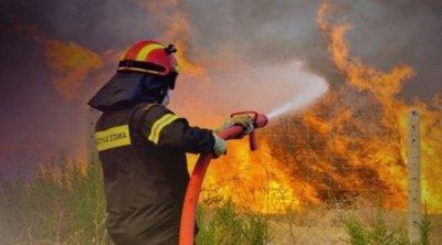 Σε εξέλιξη η φωτιά στη Ράχη Αχαΐας - Επιχειρούν ισχυρές επίγειες και εναέριες δυνάμεις