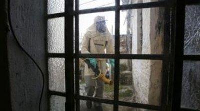 Βραζιλία: Ο δάγκειος πυρετός σκοτώνει τέσσερις φορές περισσότερους φέτος