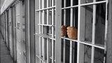 Ισοβίτης ζητά να αποφυλακιστεί επειδή... πέθανε πριν από τέσσερα χρόνια
