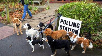 Μαζική προσέλευση... σκύλων στα εκλογικά κέντρα της Βρετανία