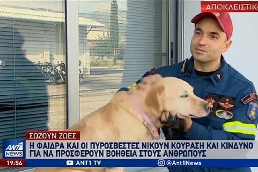 Τα σκυλιά της ΕΜΑΚ που σώζουν ζωές