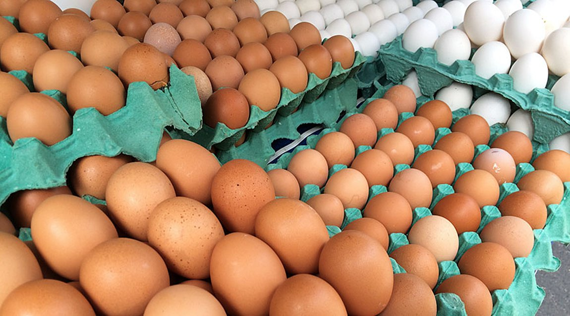 Στη «δαγκάνα» ΣΔΟΕ και ΕΦΕΤ επιχείρηση που θα έριχνε στην αγορά 324.000 αυγά Βουλγαρίας ως ελληνικά
