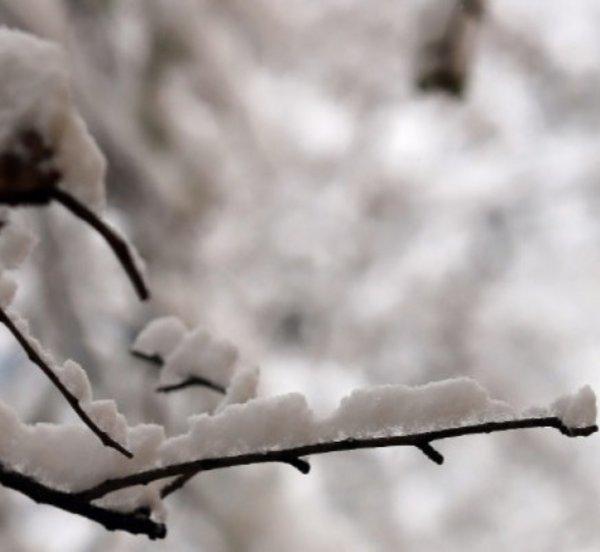 Πυκνό χιόνι στα ορεινά της Ηπείρου