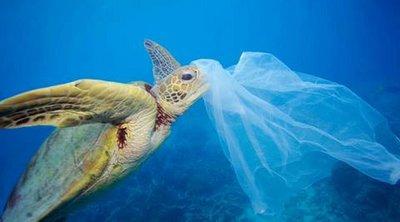 Η παγκόσμια μάχη κατά των ρυπογόνων πλαστικών στην εποχή της πανδημίας