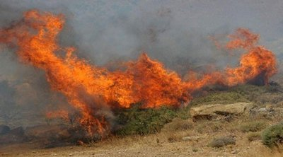 Φωτιά στη Ράχη Αχαΐας