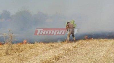 Φωτιά στη Ράχη Αχαΐας - Οι πρώτες εικόνες - ΒΙΝΤΕΟ