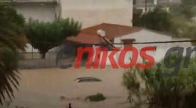 Κακοκαιρία στην Εύβοια: Σοβαρές καταστροφές στο Βασιλικό - Πλημμύρισαν σπίτια, αυτοκίνητα κατέληξαν στη θάλασσα - ΒΙΝΤΕΟ