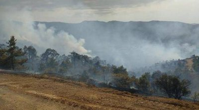 Κύπρος: Υπό πλήρη έλεγχο η φωτιά από την Πάφο μέχρι την Λεμεσό