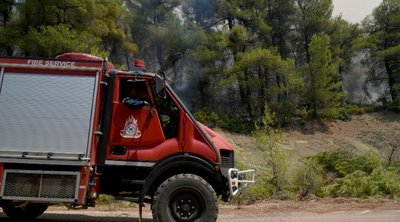 Υπό πλήρη έλεγχο τέθηκε η πυρκαγιά στο Λάκκωμα της Χαλκιδικής