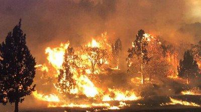 Φονικές πυρκαγιές στο Όρεγκον: Χιλιάδες άνθρωποι αναζητούν καταφύγιο - BINTEO