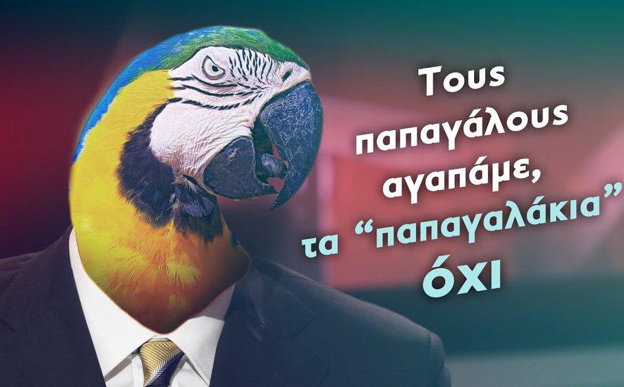 Σποτ της ΚΝΕ: «Τους παπαγάλους αγαπάμε, τα