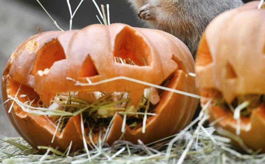 Κορωνοϊός: Απαγορεύτηκαν οι εορτασμοί για το Halloween σε περιοχές της Αγγλίας