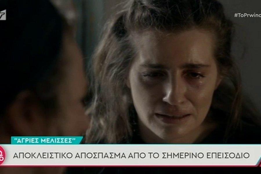Άγριες Μέλισσες-Spoiler: Η εγκυμοσύνη της Ελένης μέσα στη φυλακή - Πώς και πότε θα τη «διεκδικήσει» ο Βόσκαρης - ΒΙΝΤΕΟ