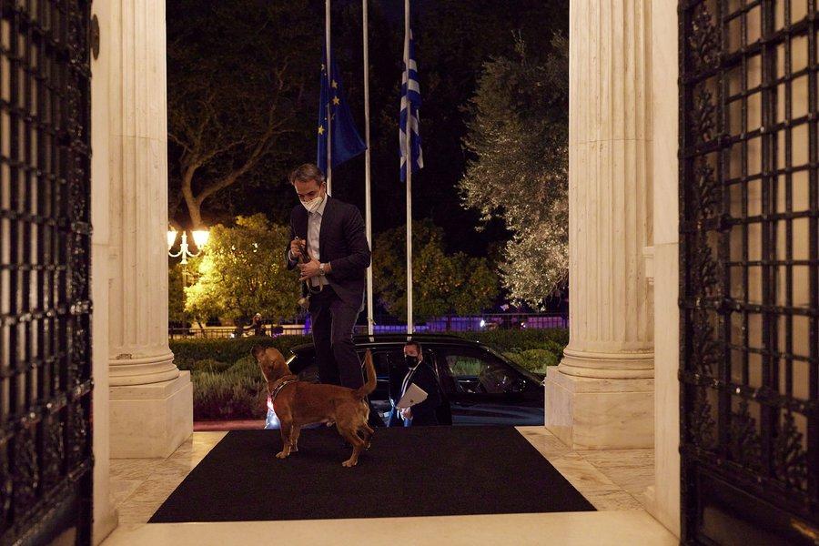 Ο Μητσοτάκης υιοθέτησε σκυλάκι από καταφύγιο που επισκέφθηκε - Δείτε φωτογραφίες του «Πίνατ»