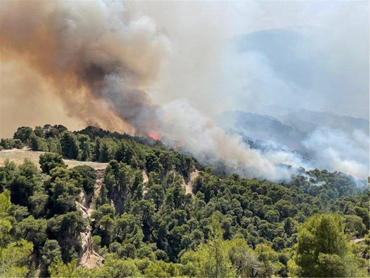 Χαρδαλιάς: «Είναι σε ύφεση η φωτιά στην Κορινθία, δεν έχει όμως οριοθετηθεί» - ΒΙΝΤΕΟ