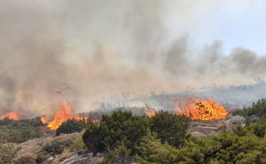 Πολύ υψηλός κίνδυνος πυρκαγιάς αύριο για 5 περιφέρειες της χώρας