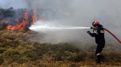 Σε εξέλιξη η φωτιά στην περιοχή Θυρίου στην Αιτωλοακαρνανία – Ενισχύθηκαν οι πυροσβεστικές δυνάμεις