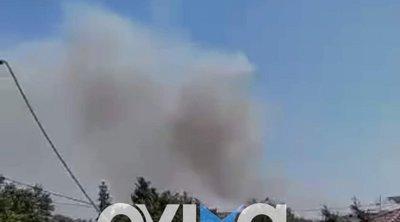 Χαλκίδα - Φωτιά στο Βαθροβούνι - Τι λέει ο αντιπεριφερειάρχης Εύβοιας