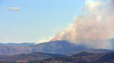 Ναύπλιο: Φωτιά σε δασική έκταση στο Αραχναίο - ΦΩΤΟ