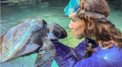 Μια Ελληνίδα φύλακας- άγγελος για τον Μπομπ και άλλες θαλάσσιες χελώνες στη Νότια Αφρική