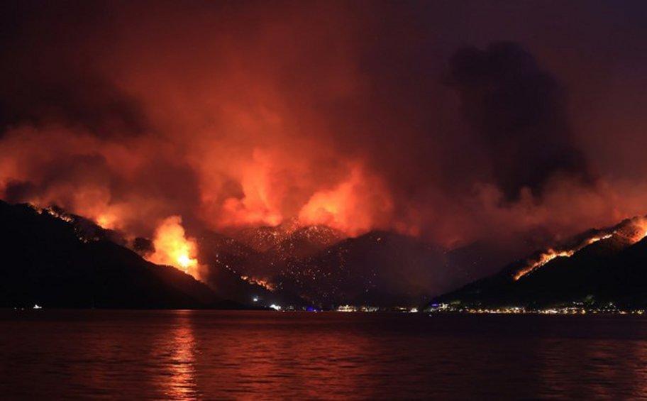 Τουρκία: 8 νεκροί στις πυρκαγιές - Οργή για τον Ερντογάν: Πέταξε τσάι σε πυρόπληκτους - BINTEO
