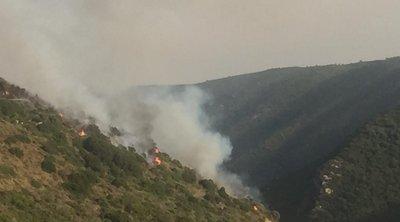 Σε εξέλιξη η φωτιά στην περιοχή Βασιλίτσι Μεσσηνίας