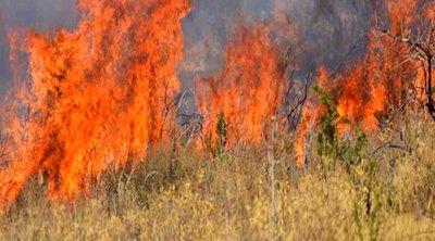ΓΓΠΠ: Πολύ υψηλός κίνδυνος πυρκαγιάς την Τρίτη για πολλές περιοχές της χώρας
