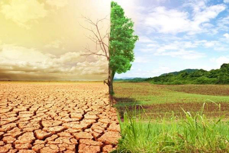 Διάσκεψη για το Μέλλον της Ευρώπης: Κλιματική αλλαγή, περιβάλλον και υγεία στο επίκεντρο των συζητήσεων (audio)