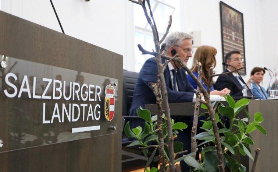 Ο Α. Τζιτζικώστας σε εκδήλωση στην Αυστρία για το μέλλον της Ευρώπης